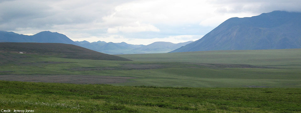 The Fate of Permafrost Carbon
