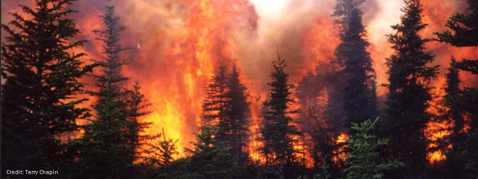 Wildfires Affect Permafrost Stability